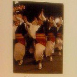 小金井阿波踊りの入選写真の画像